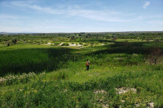 land survey, boise idaho